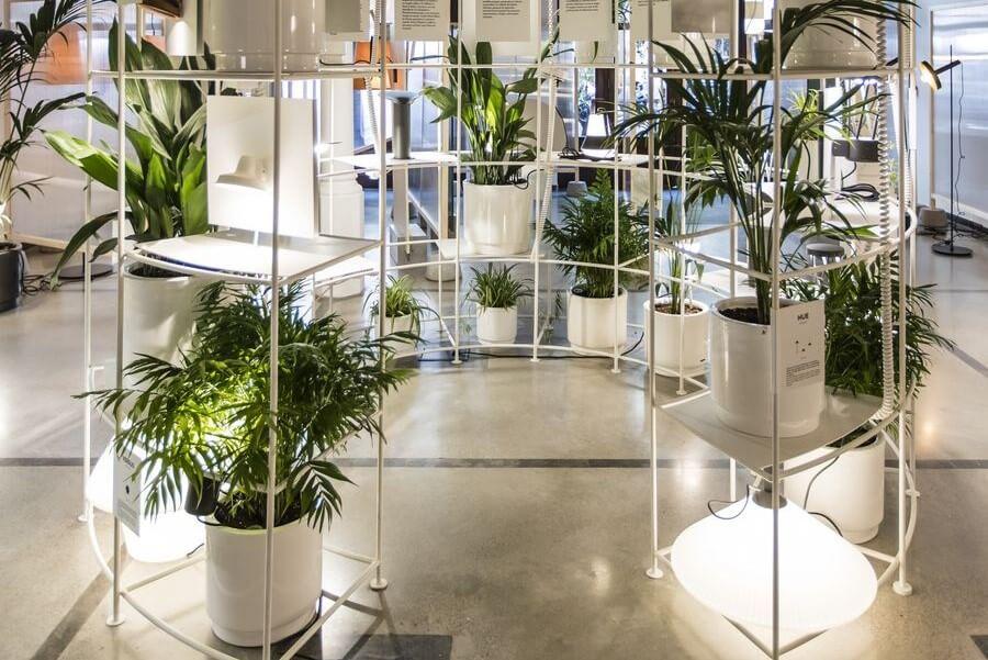 Showroom-Faro-Barcelona_2