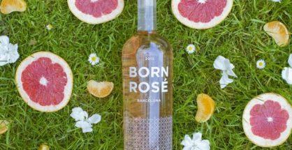 Born Rosé Orgánico